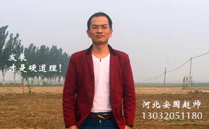 河北安国赵帅